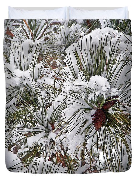 Snowy Pine Needles Duvet Cover by Aimee L Maher Photography and Art