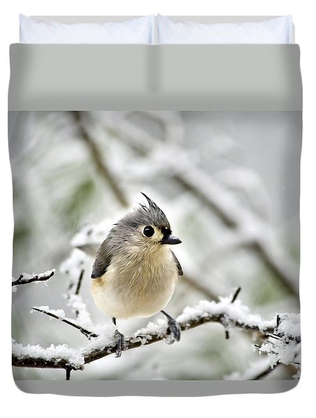 Snowy Tufted Titmouse Duvet Cover by Christina Rollo