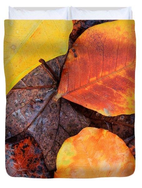 So Cal Autumn Duvet Cover by Heidi Smith