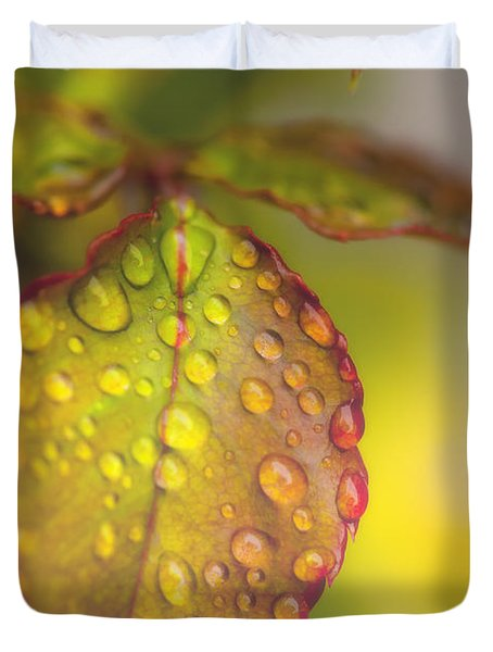 Soft Morning Rain Duvet Cover by Stephen Anderson
