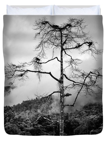 Solitary Tree Duvet Cover by Dave Bowman