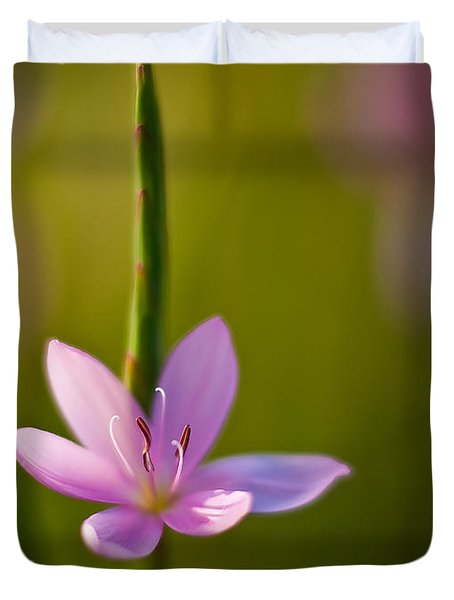 Solo Crocus Duvet Cover by Mike Reid