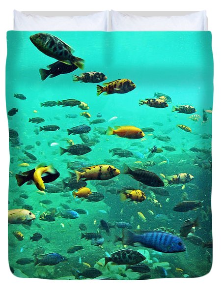 Something Fishy Duvet Cover by Kevin Fortier