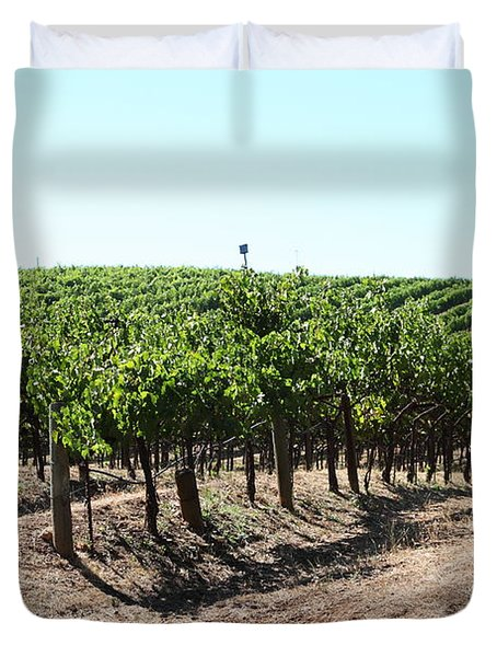 Sonoma Vineyards In The Sonoma California Wine Country 5d24598 Duvet Cover by Wingsdomain Art and Photography