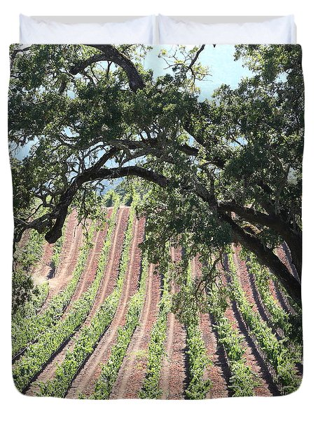 Sonoma Vineyards In The Sonoma California Wine Country 5D24619 square Duvet Cover by Wingsdomain Art and Photography