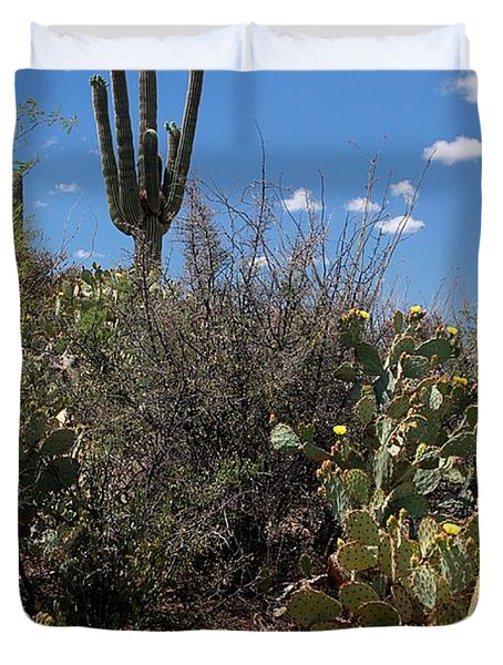 Sonoran Desert Spring Duvet Cover by Joe Kozlowski