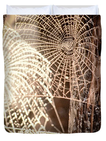Spider Webs Duvet Cover by Anonymous