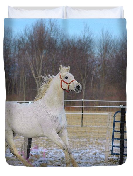 Spirited Horse Duvet Cover by Kathleen Struckle