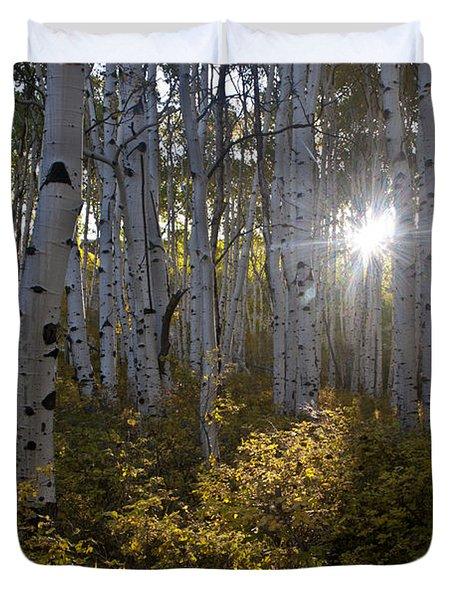 Spot Of Sun Duvet Cover by Jeff Kolker