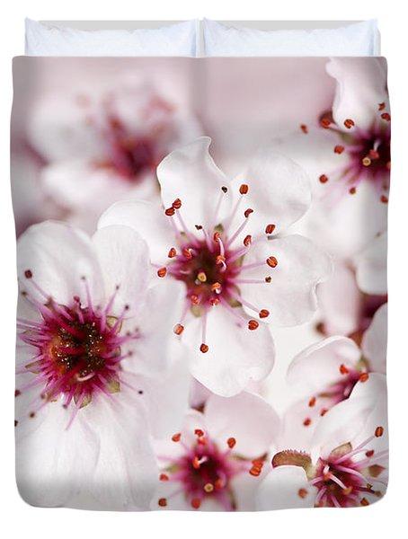 Spring Cherry Blossom Duvet Cover by Elena Elisseeva