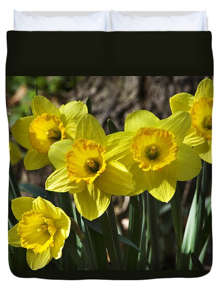 Spring Daffodils Duvet Cover by Christina Rollo