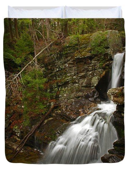 Spring Falls Duvet Cover by Karol Livote