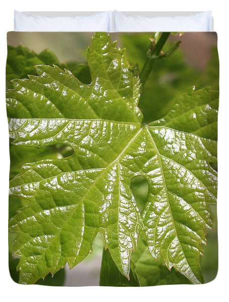 Spring Grape Leaf Duvet Cover by Carol Groenen