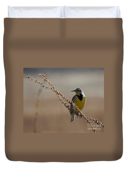 Spring Meadowlark Duvet Cover by Marty Fancy