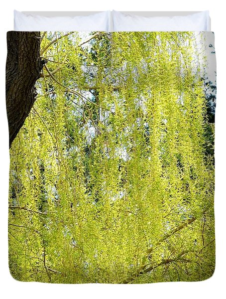 Spring Weeping Willow Duvet Cover by Will Borden