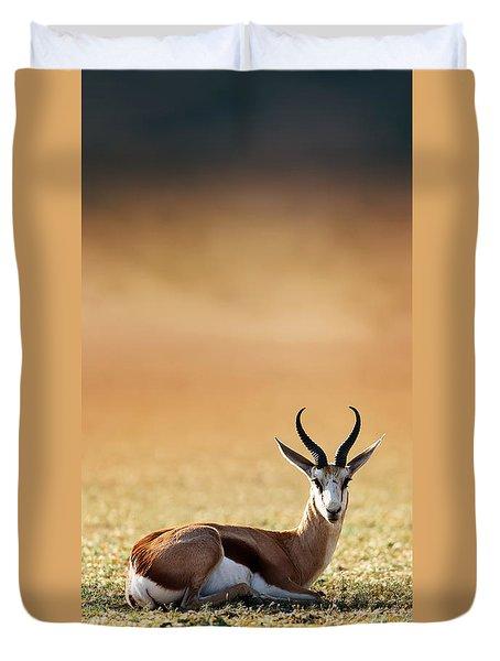 Springbok Resting On Green Desert Grass Duvet Cover by Johan Swanepoel