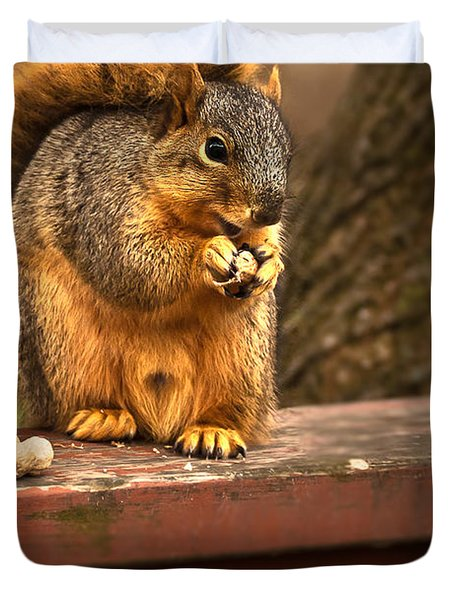 Squirrel Eating A Peanut Duvet Cover by  Onyonet  Photo Studios