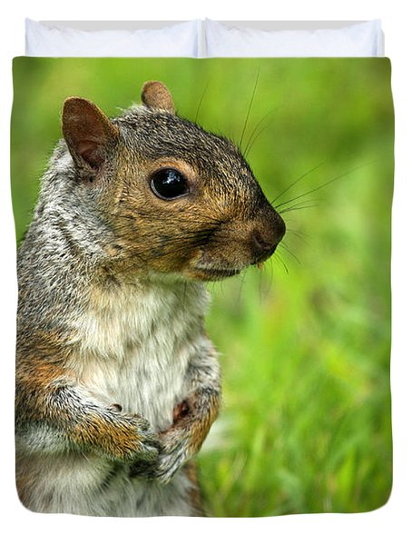 Squirrel Pose Duvet Cover by Karol Livote
