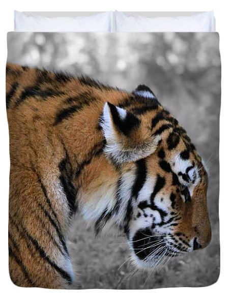 Stalking Tiger Duvet Cover by Dan Sproul