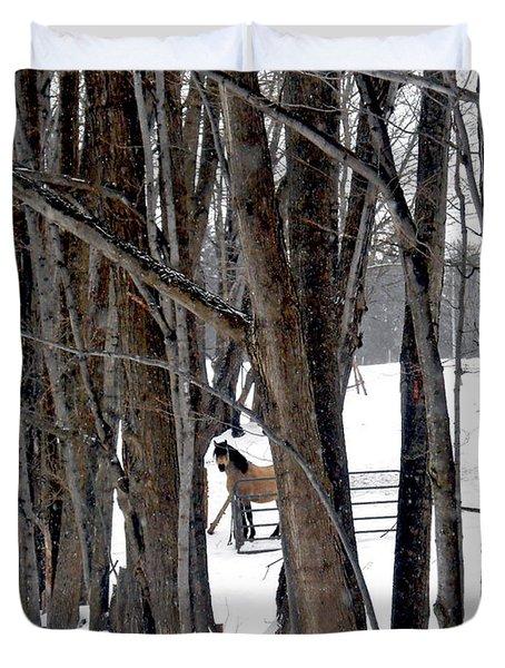 Stallion In The Woods Duvet Cover by Patricia Keller