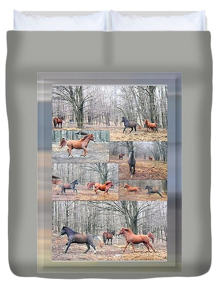 Stallions Enjoy Some Horsing Around Duvet Cover by Patricia Keller
