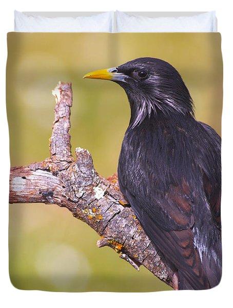 Starlings Duvet Cover by Guido Montanes Castillo