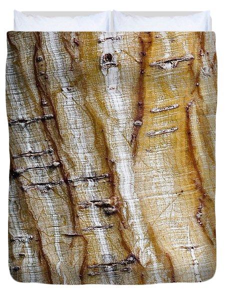 Striped maple Duvet Cover by Steven Ralser