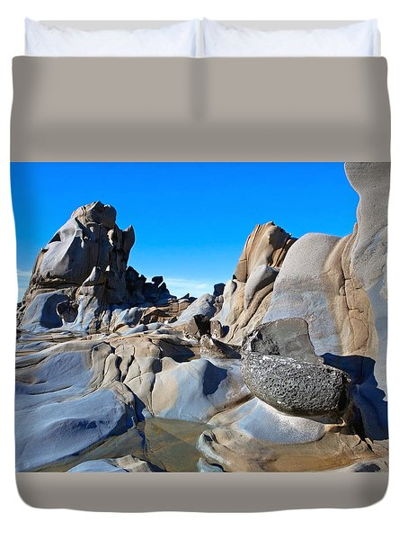 Stump Beach Duvet Cover by Daniel Furon
