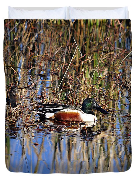 Stunning Shovelers Duvet Cover by Al Powell Photography USA