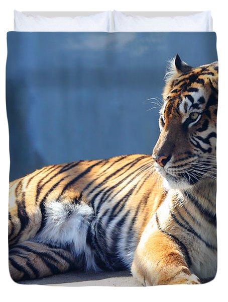 Sumatran Tiger 7D27276 Duvet Cover by Wingsdomain Art and Photography