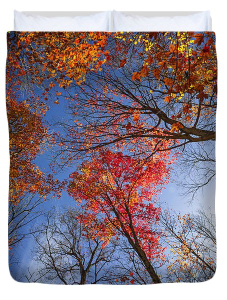 Sun in fall forest canopy  Duvet Cover by Elena Elisseeva