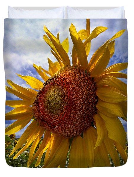 Sunflower Blue Duvet Cover by Debra and Dave Vanderlaan