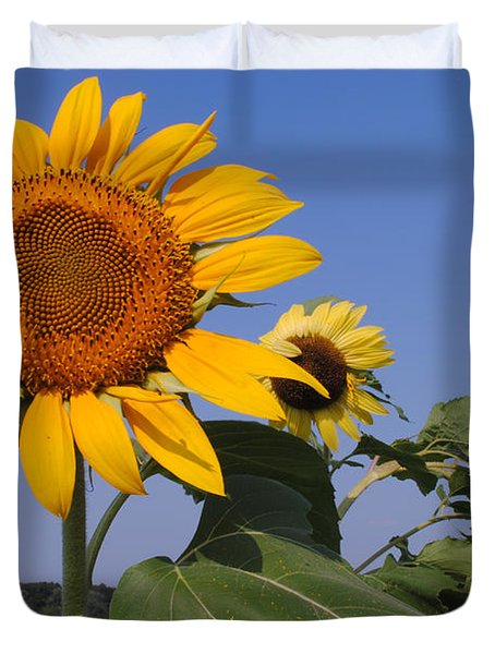 Sunflower Blues Duvet Cover by Frozen in Time Fine Art Photography