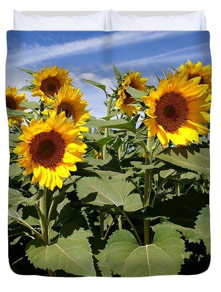Sunflower Field Duvet Cover by Kerri Mortenson