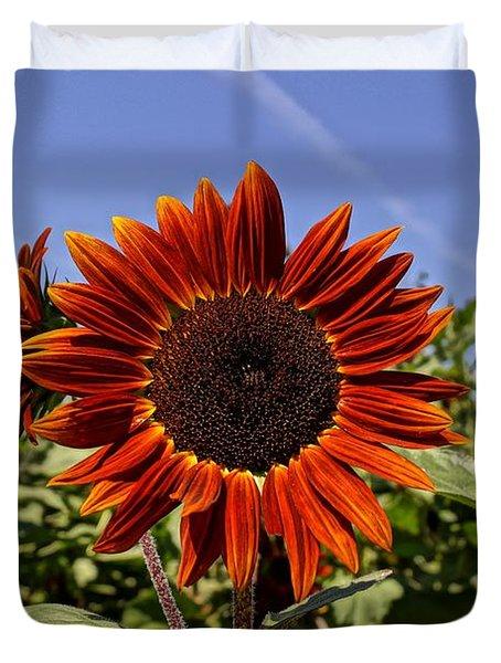 Sunflower Sky Duvet Cover by Kerri Mortenson