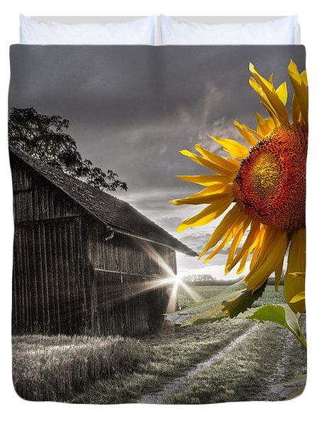 Sunflower Watch Duvet Cover by Debra and Dave Vanderlaan