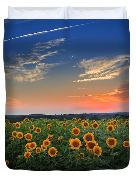Sunflowers in the evening Duvet Cover by Bill  Wakeley