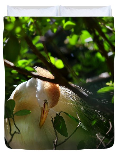 sunlit egret Duvet Cover by Laura  Fasulo