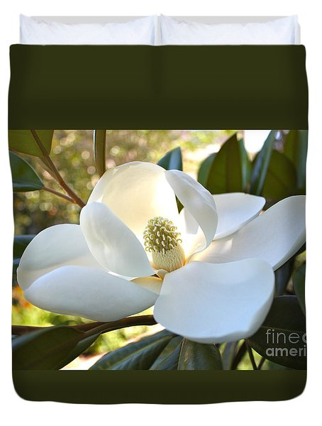 Sunlit Southern Magnolia Duvet Cover by Carol Groenen