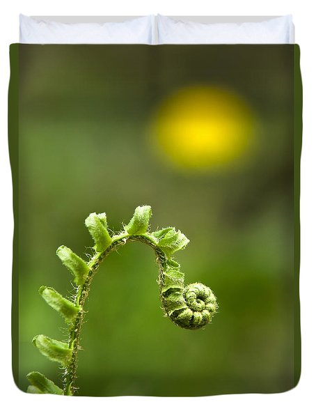 Sunrise Spiral Fern Duvet Cover by Christina Rollo