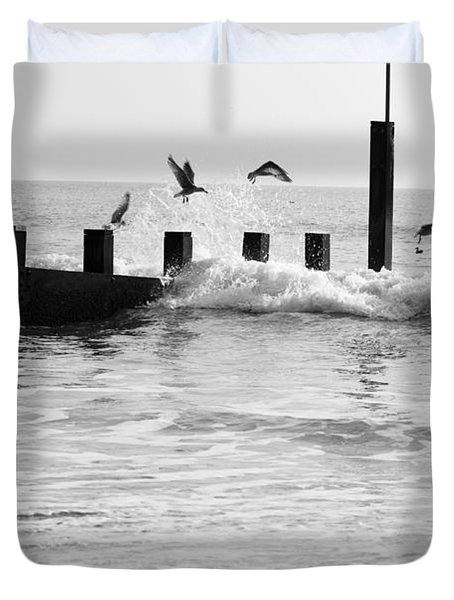 Surprised Seagulls Duvet Cover by Anne Gilbert