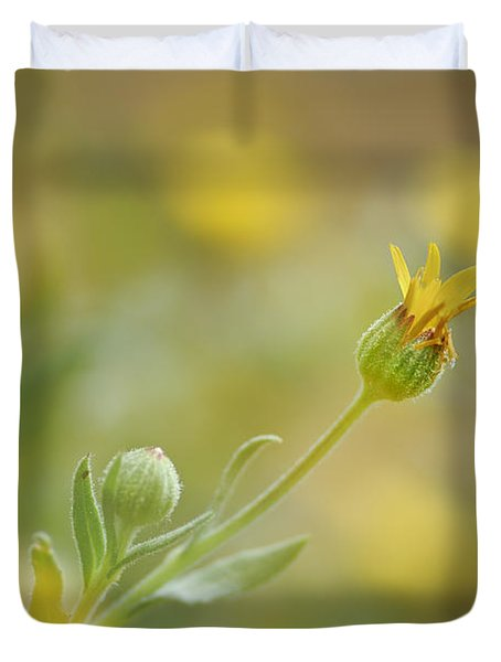 Surrounded Duvet Cover by Guido Montanes Castillo