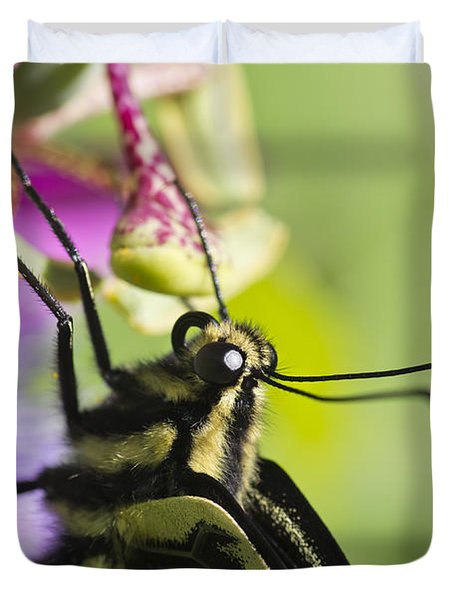 Swallowtail Butterfly Duvet Cover by Priya Ghose
