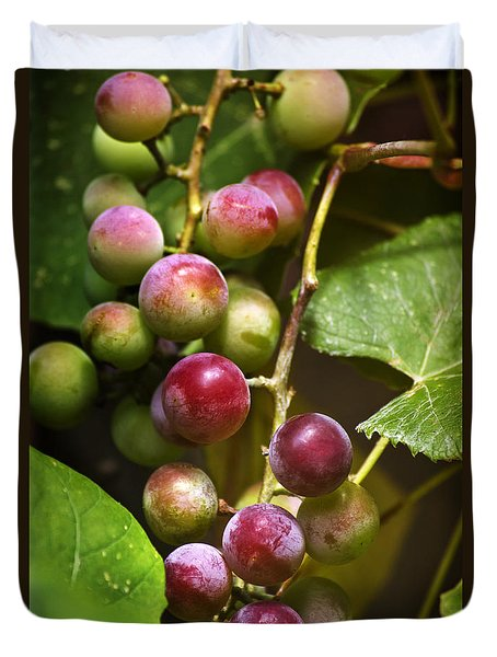 Sweet Grapes Duvet Cover by Christina Rollo