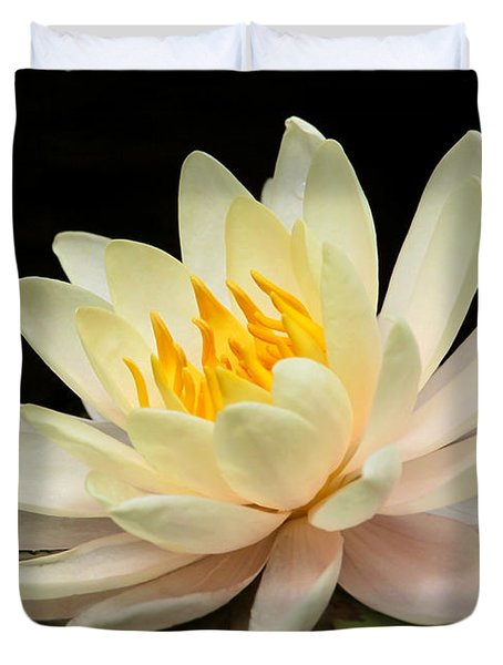 Sweet Peach Water Lily Duvet Cover by Sabrina L Ryan