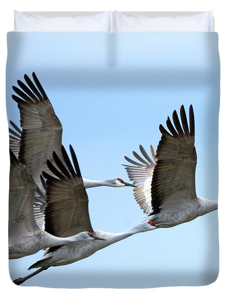 Synchronized Duvet Cover by Mike Dawson
