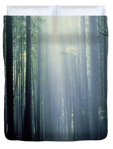 T. Bonderud Path Through Trees In Mist Duvet Cover by First Light