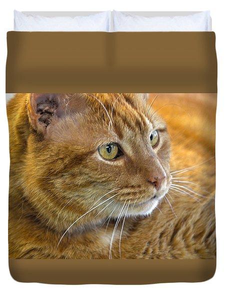 Tabby Cat Portrait Duvet Cover by Sandi OReilly