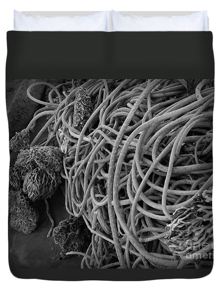 Tangles Of Seaweed 2 Bw Duvet Cover by Chalet Roome-Rigdon