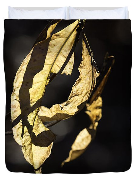 Tattered Leaf Duvet Cover by Fran Gallogly